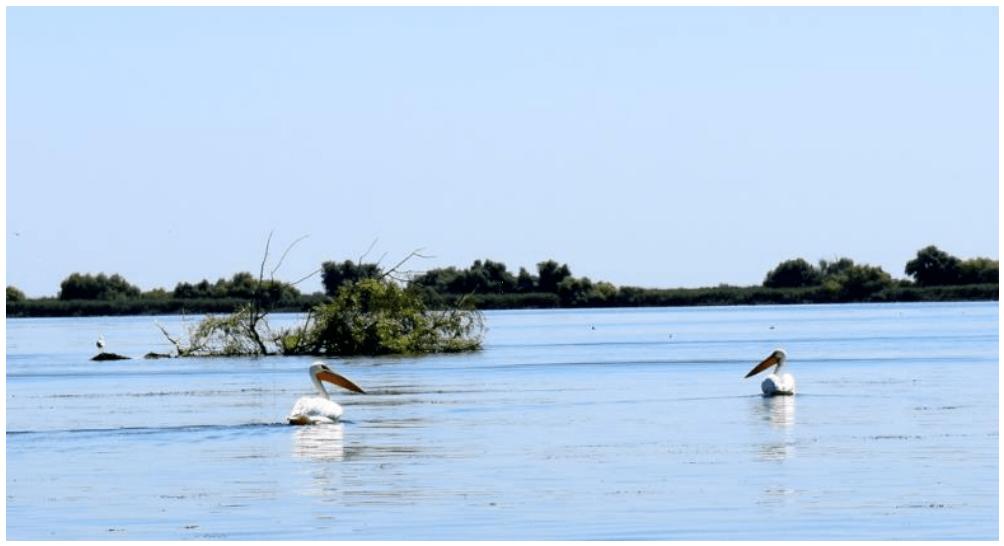 Delta del Danubio: El Santuario natural de Europa